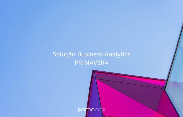 Solução Business Analytics Primavera