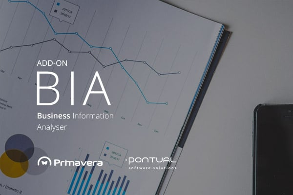 Add-on Primavera: BIA – Business Information Analyser 1